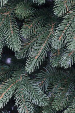 Ветви искусственной ели Премиум Зелёная купить