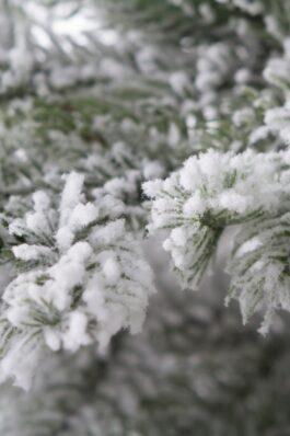 Ель искусственная Аляска Заснеженная 220 см