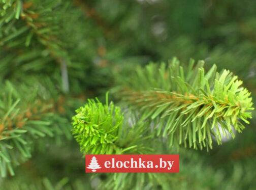 Ветви искусственной ели Канадская Зелёная